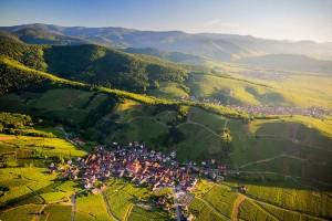 Voyage dans le Vignoble Alsacien